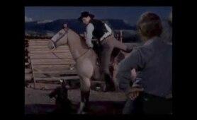 """Jack Palance Mounts His Horse Backwards in """"SHANE"""" (1953)"""