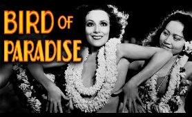 Bird Of Paradise - Full Movie   Dolores del Rio, Joel McCrea, John Halliday, Richard Gallagher