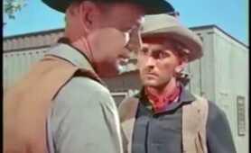 THE PROUD REBEL (1958) Alan Ladd - Olivia De Havilland - Dean Jagger
